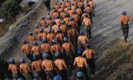 1993/1 Tertip Askerlerin Dağıtım Yerleri