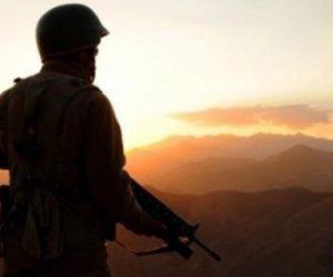 2013- 2014 Bedelli Askerlik Çıkacak mı?