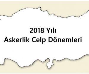 2018 Celp Dönemleri